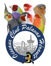 Logo oiseaux.jpg