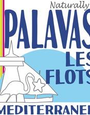 LOGO OT PALAVAS 2015 light.jpeg