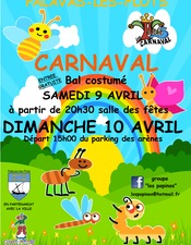 carnaval 2016 A3.jpeg