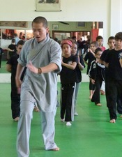2014-03-14 Festival des arts martiaux.JPG